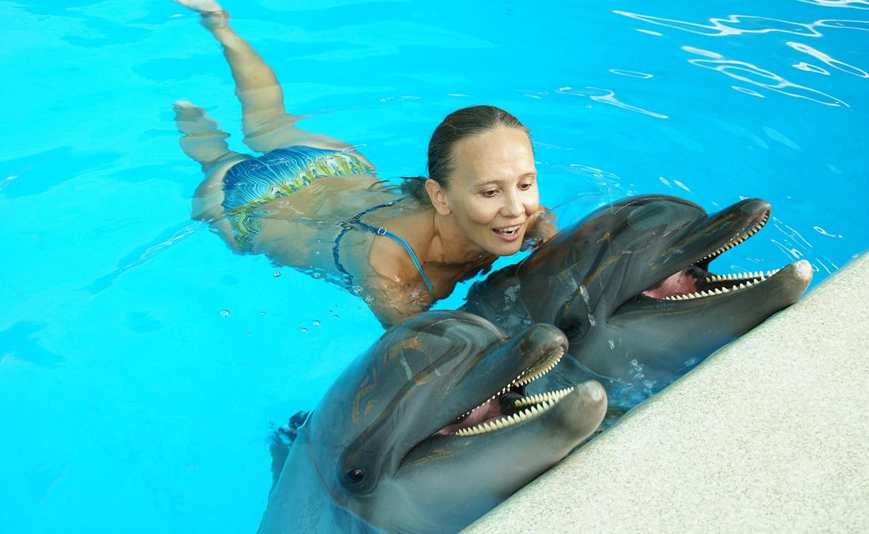 dolphin-swim_1