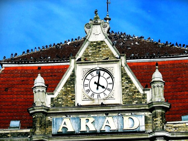 Arad is my home